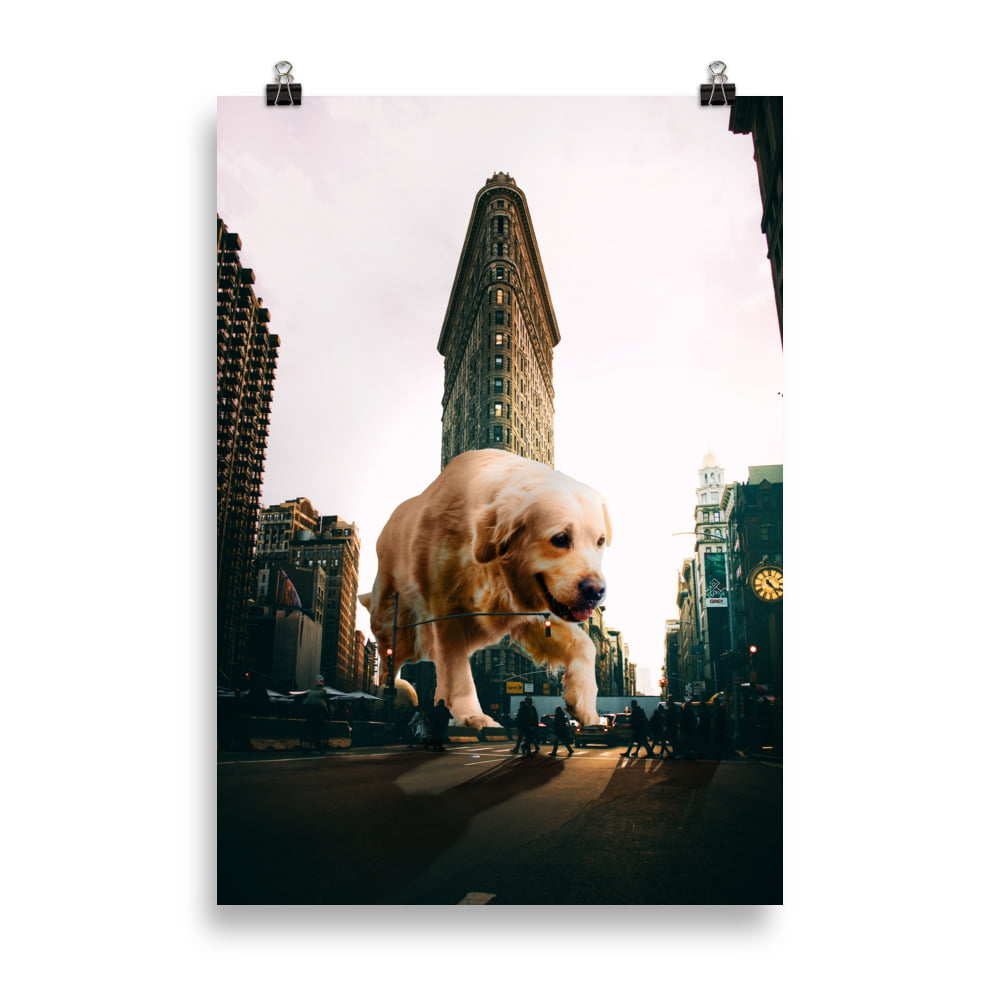 Plakat New York vs Golden Retriever thumbnail